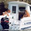 Quicksilver 650 Camping