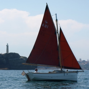 Cornish Shrimper 19